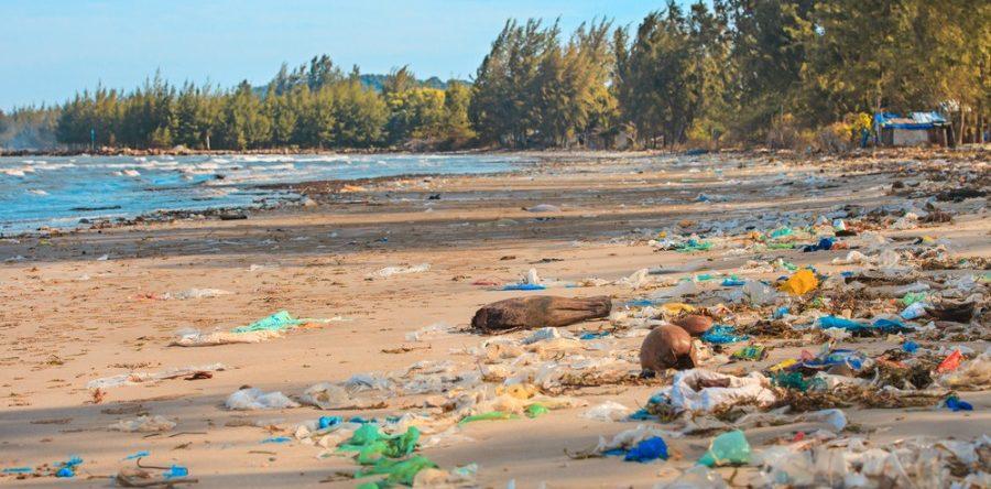 California HDPE plastic manufacturer profits through recycling