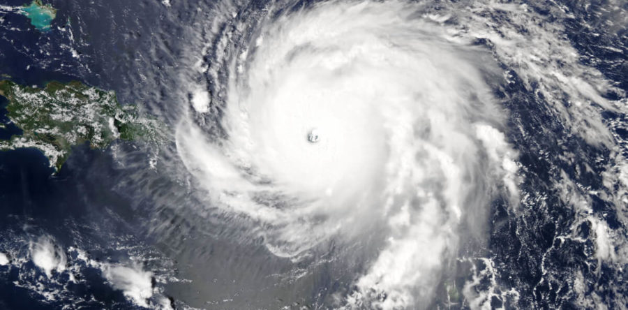 Hurricane Irma Disrupts Pulp And Paper Production