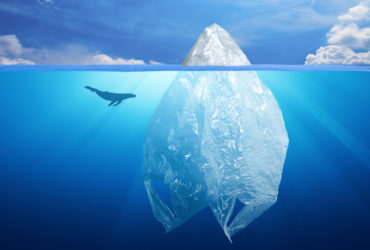 "Confronting ""the Plastics Paradox"" as it Emerges"